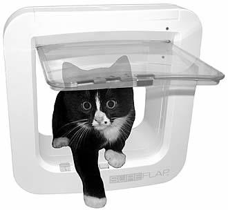 Cat Won T Use Microchip Cat Flap