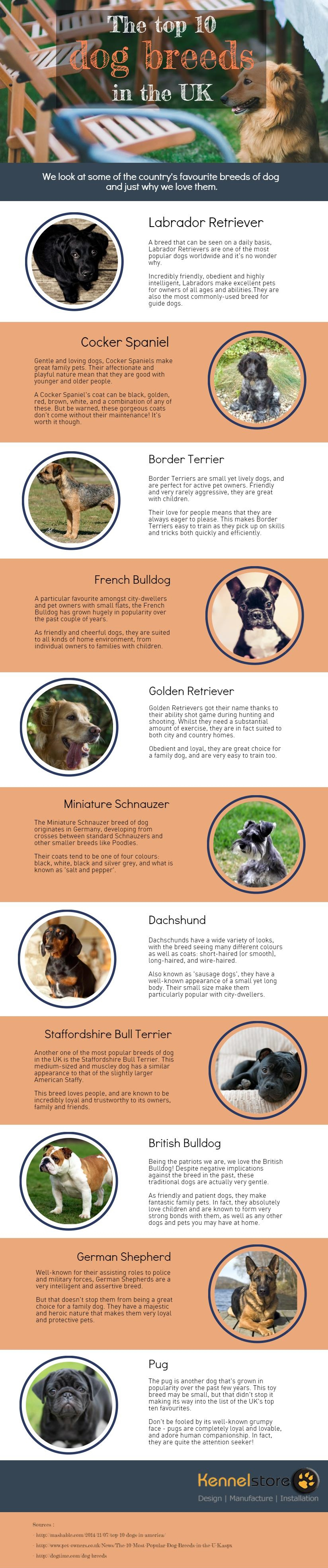 Top Ten Dog Breeds in the UK